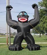 16' Gorilla